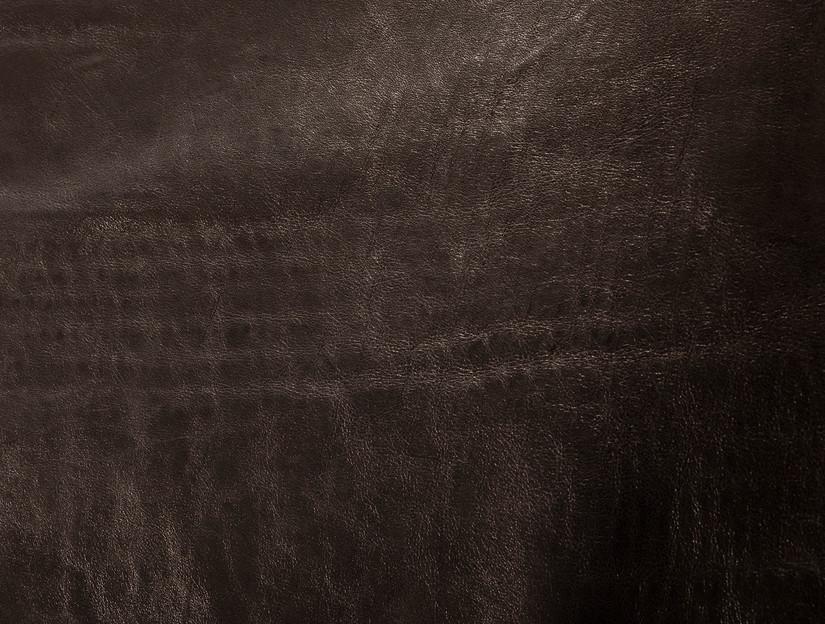 Black Stork Eggshell backside detail 2