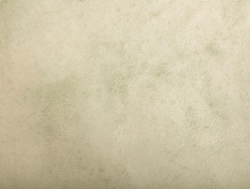 Cuckoo Eggshell grainside detail 1