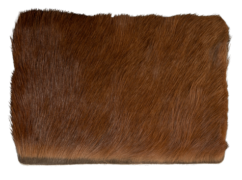 Steppe - look chestnut brown