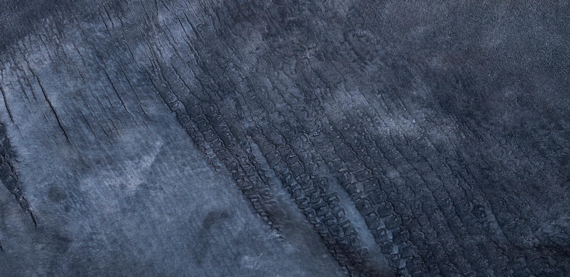 Taiman midnight blue backside