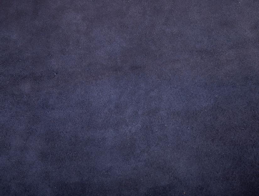 Demoiselle Crane blue backside