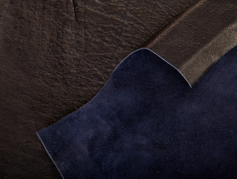 Demoiselle Cranes back and front embossed blue