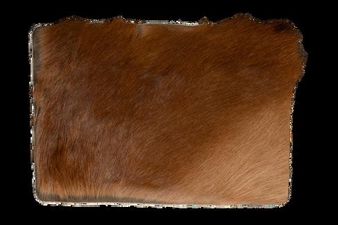 Steppe - look Chestnut brown