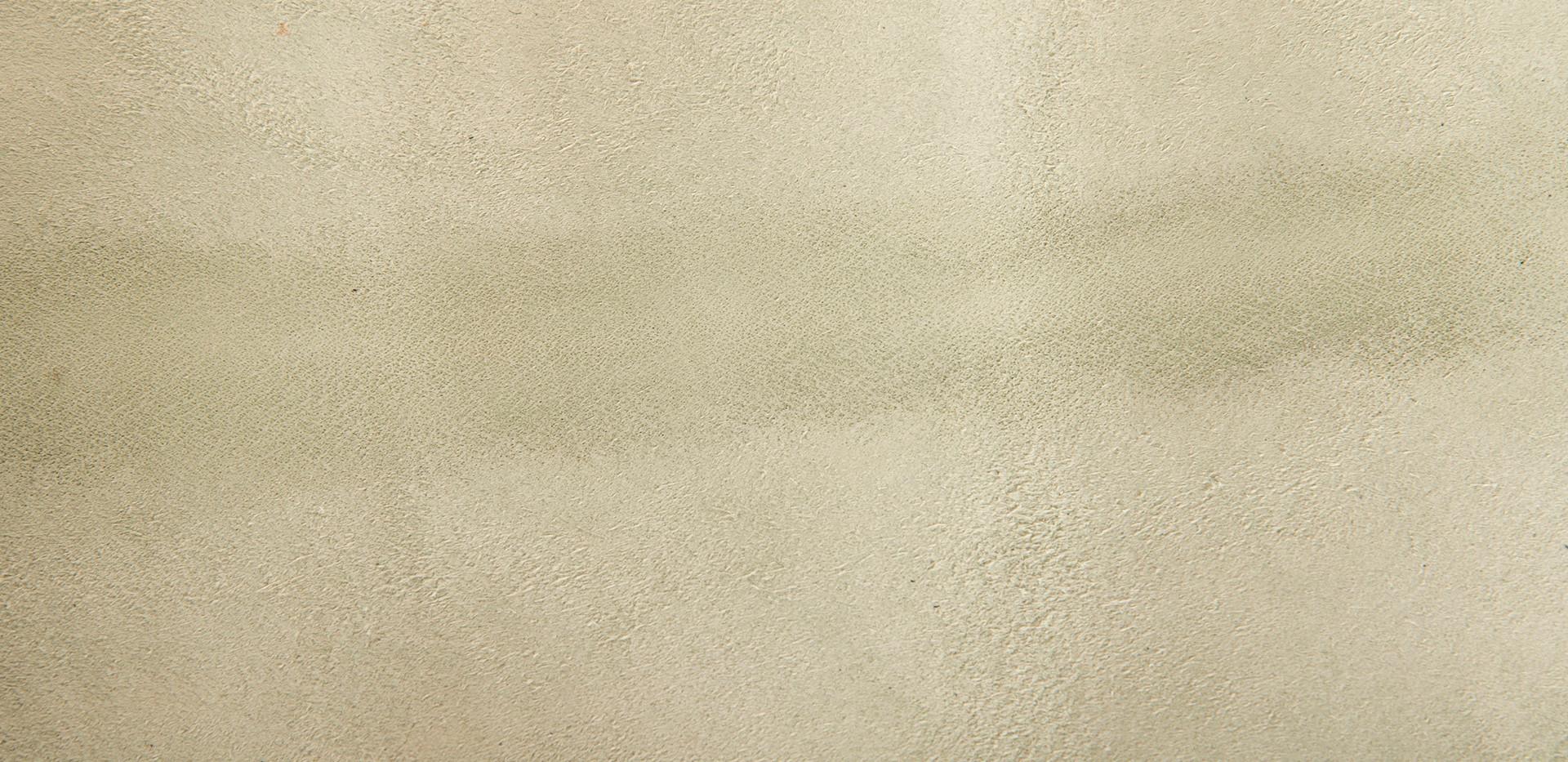 Cuckoo Eggshell grainside detail 2