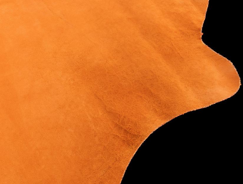 Rudysheldrake A backside detail 2