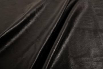Black stork Eggshell - look