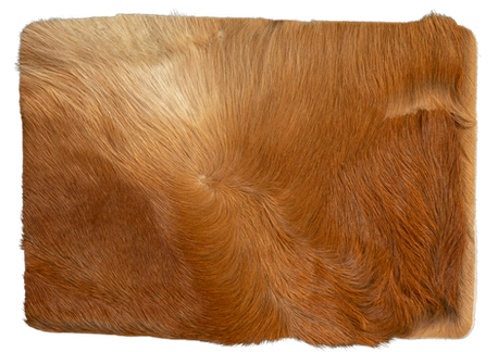 Steppe -look orange