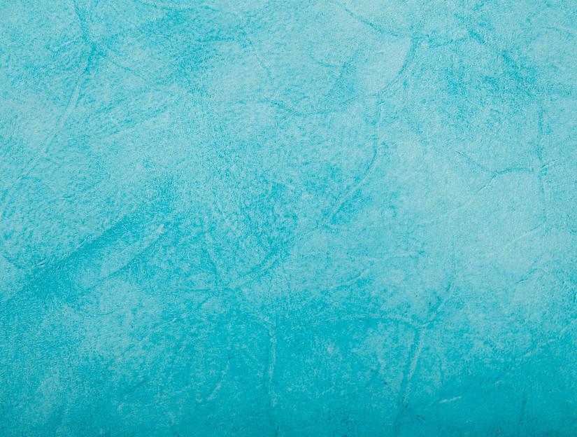 Egret B backside detail