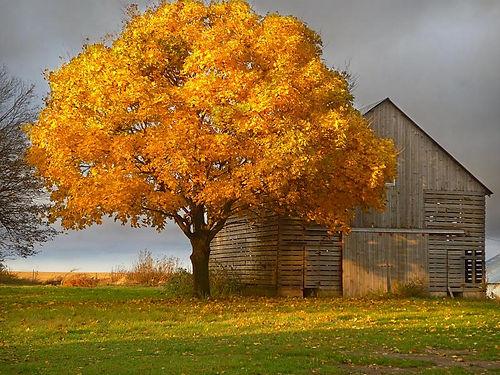 Whiterock.Conservancy_PhotoScenice.Lands