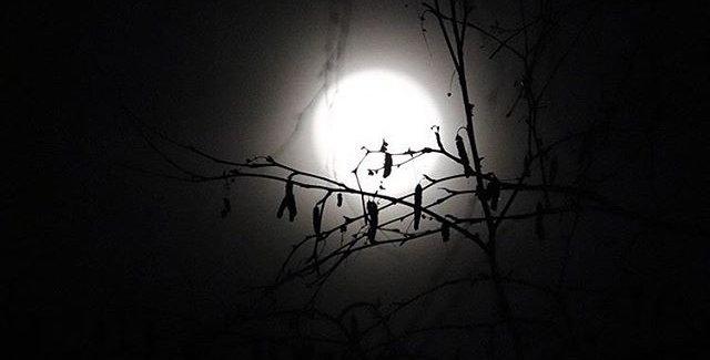 Autumn peace moon group spell