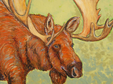 Moose+-+Sarantopulos.jpg
