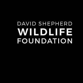 DSWF_WildlifeArtistoftheYear2020_Badge_B