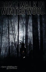 Don't Walk In Winter Wood: Contains a chapter by Daniel Moler