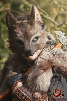 Loup brun fluffy