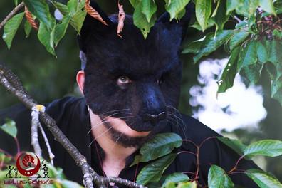 Panthère noire bleutée fluffy