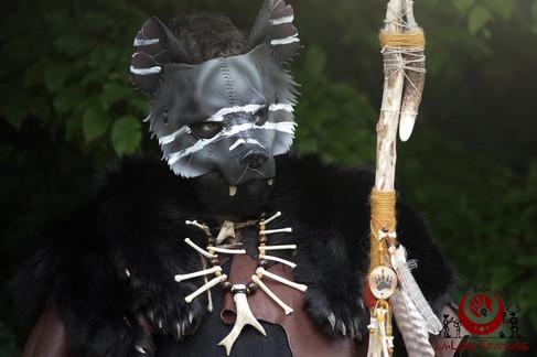 Hyène grise