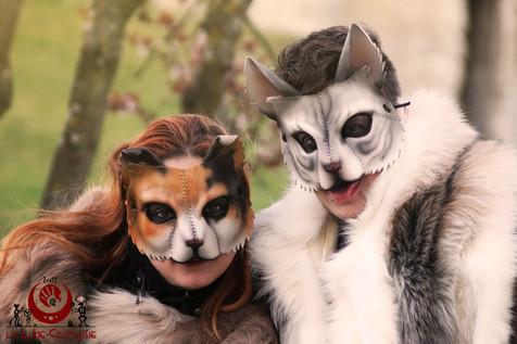 Chats calico et blanc tigré