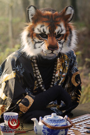Tigre du bengal fluffy