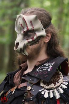Crâne d'ursidé