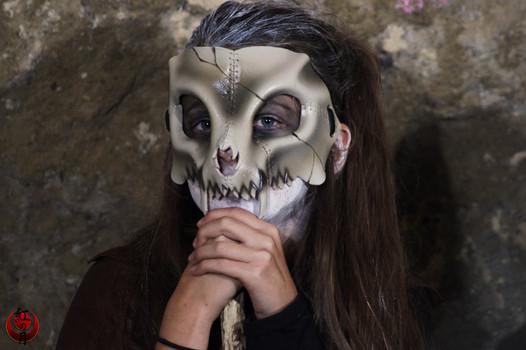 Crâne de félidé