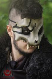 Crâne de félin