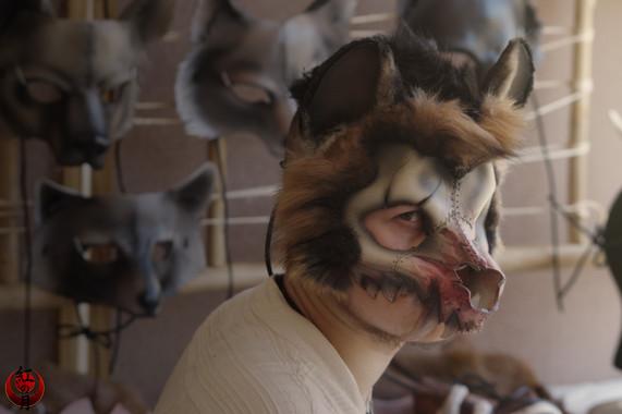 Crâne de hyène fluffy