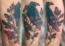 Colorful Raven