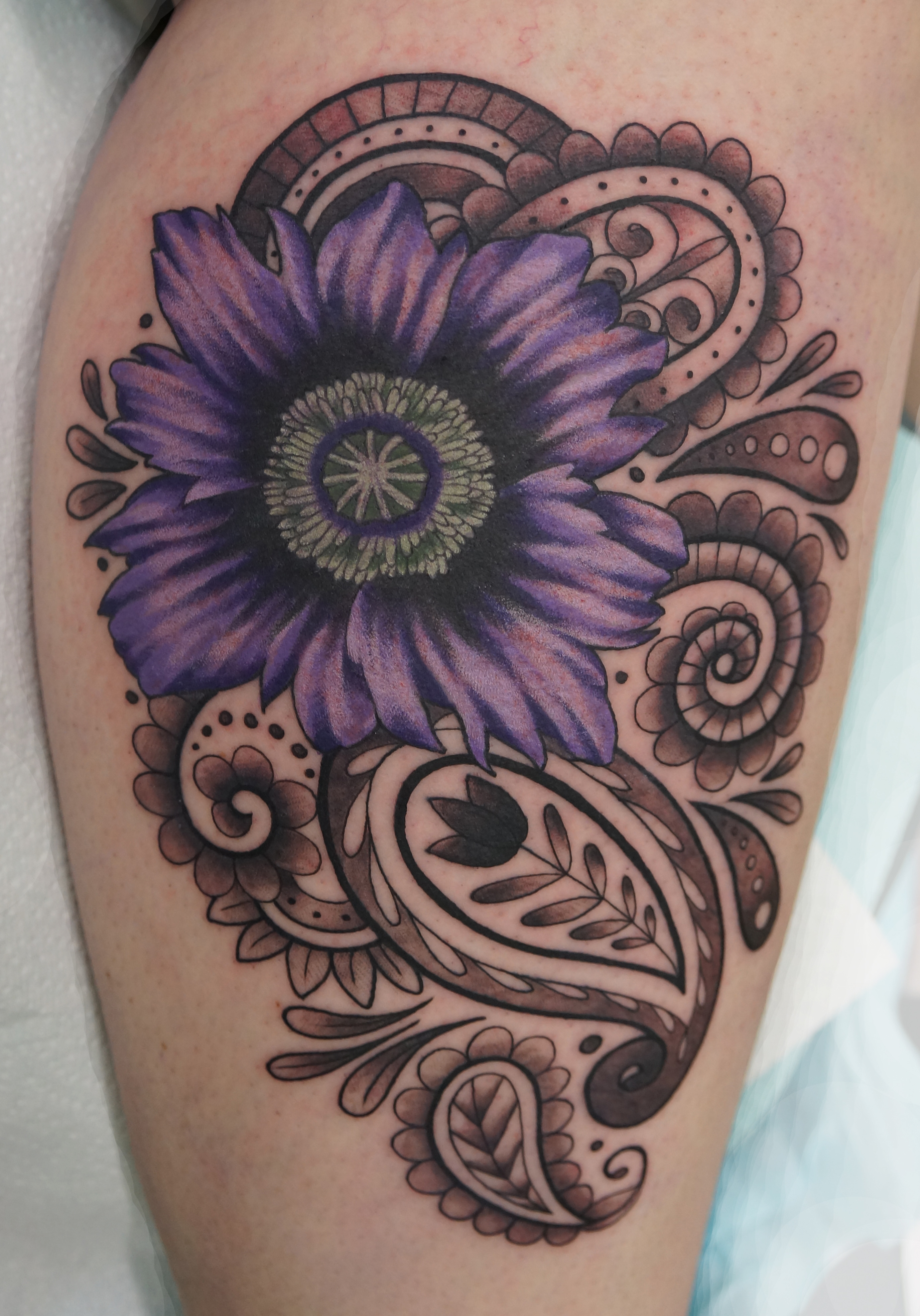 Purple Poppy and Paisley
