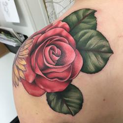 Rose Shoulder