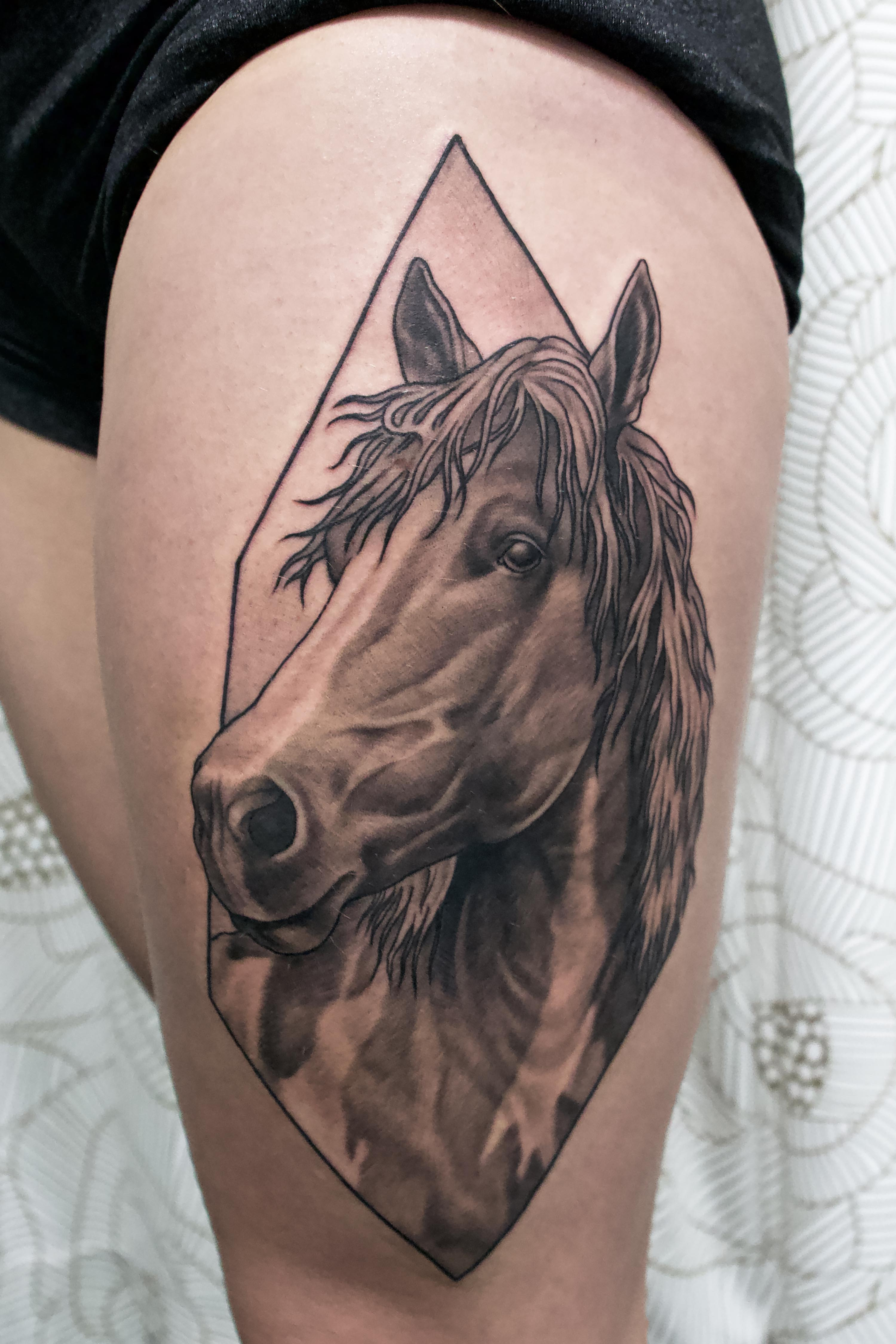 Horse in Diamond