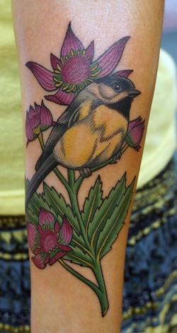 Bird and Marsh Cinqfoil