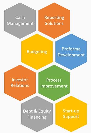 CFO Role.png