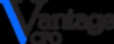VantageCFO watermark