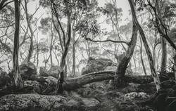Landscape-Photography-Workshop-Victoria.jpg