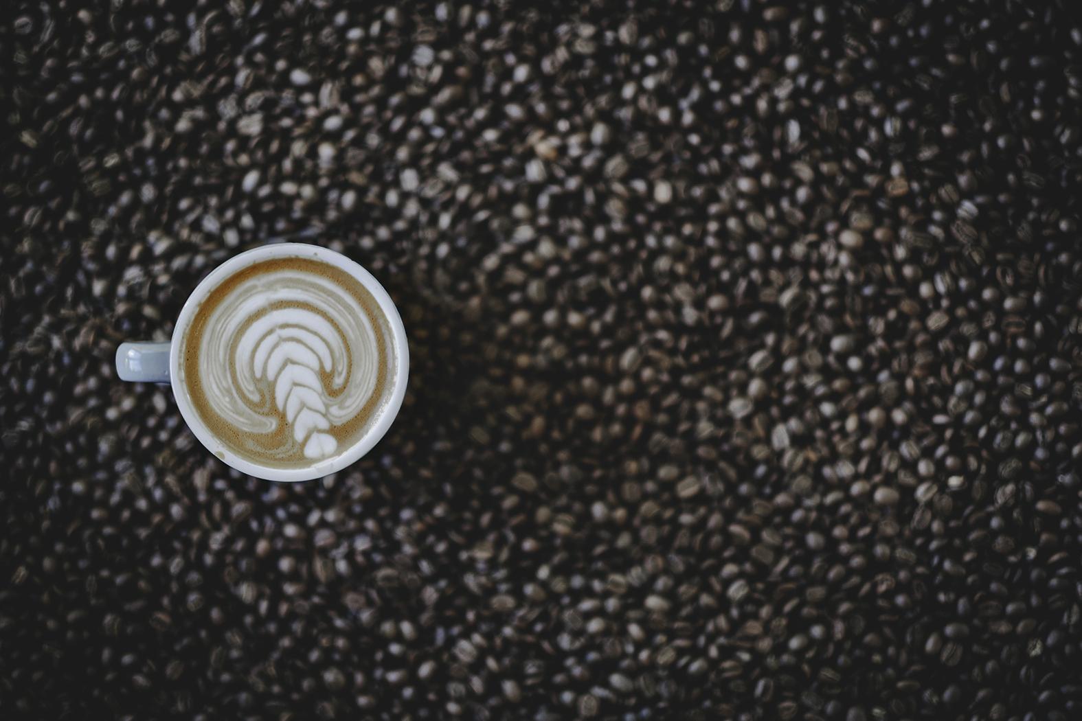 Moto Bean Coffee