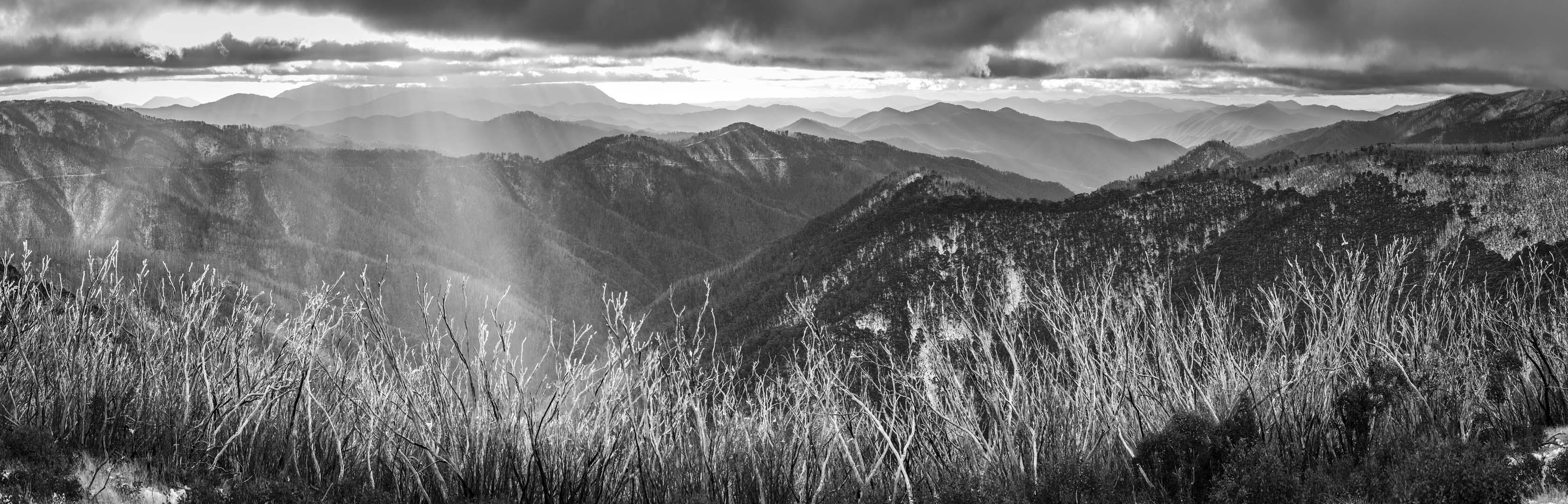 Victorian-Alps-Photography-Workshop
