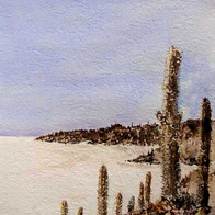 Flat White, Uyuni Salt Lake, Bolivia