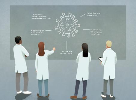Where do new viruses like the coronavirus come from?