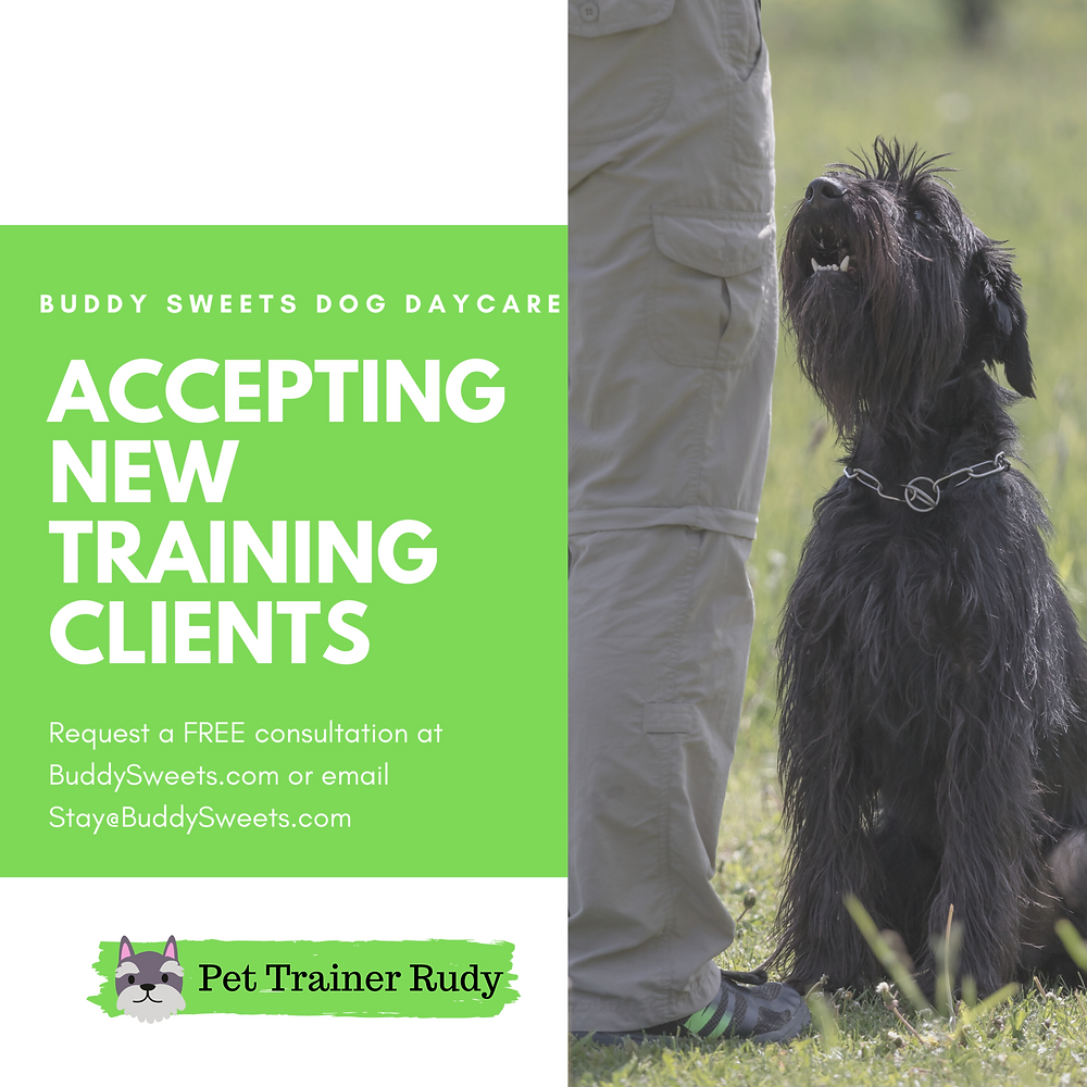 Schedule your free training consultation.