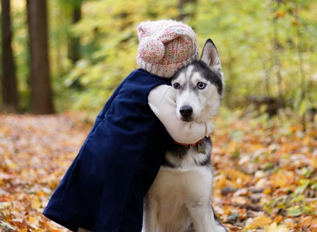 It's National Hug Your Dog Day!