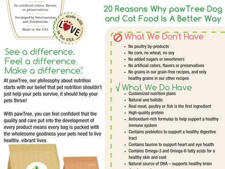 Why We Choose pawTree and Why You Should Too!