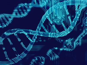 Gene Editing In More Depth