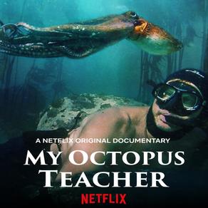 Mia's Octopus Teacher