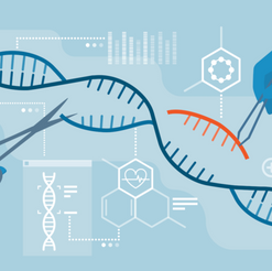 How Gene Editing Works
