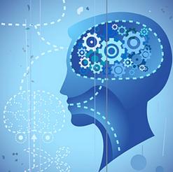 The Cognitive Revolution