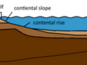 The Layers Of the Ocean