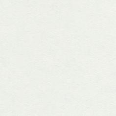 0204 White Opaco