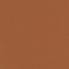 1551 Burnt Orange Gloss