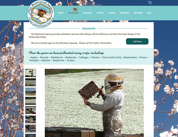 Beetanical Apiary -website design