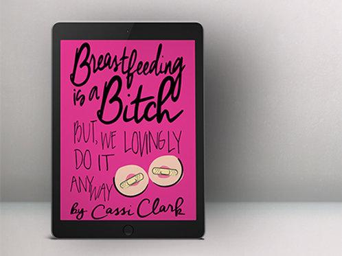 eBook Cover Design 50% Deposit